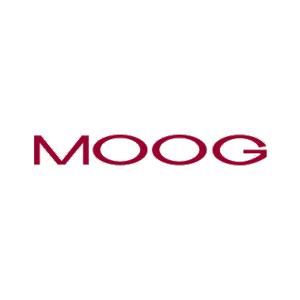 اسلیپ رینگهای Moog